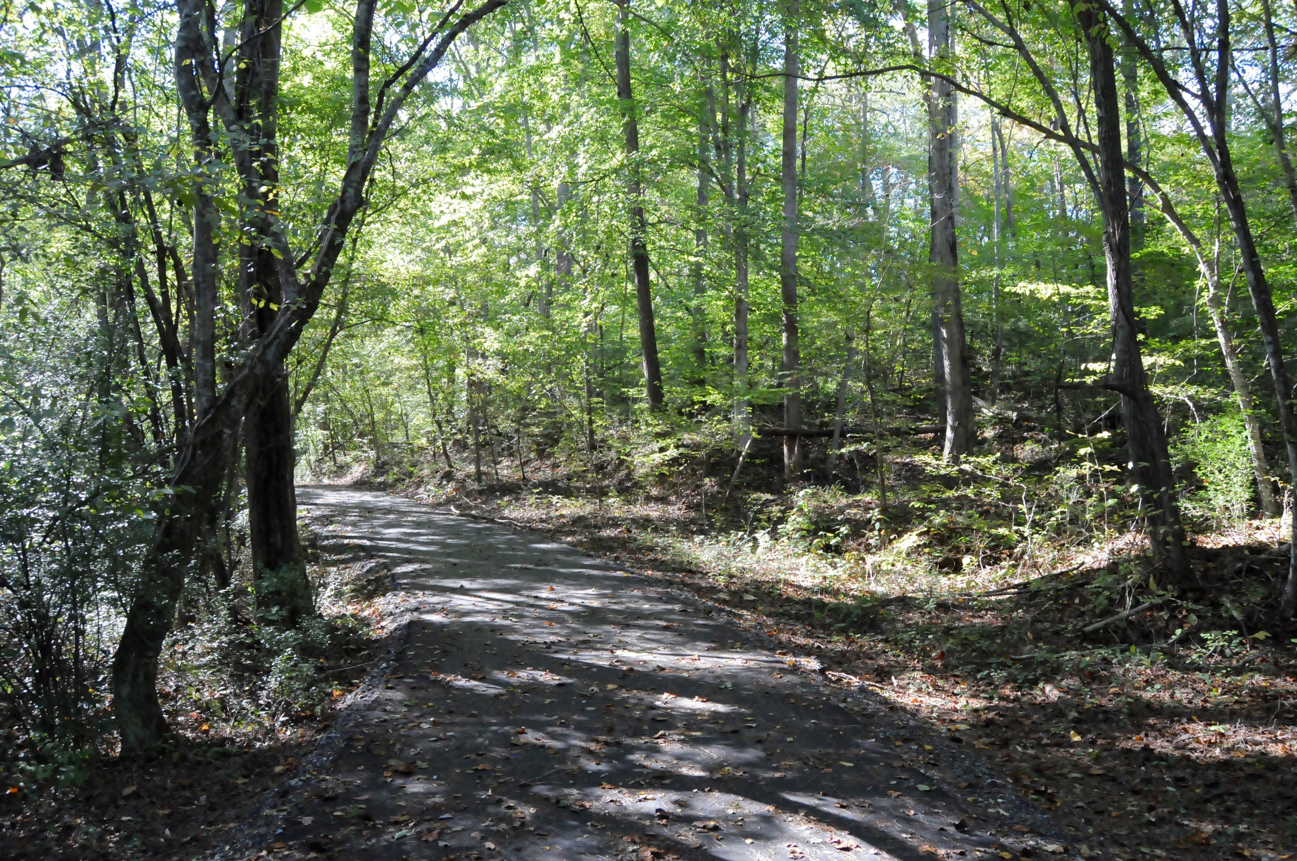 Rutherfordton Trails